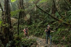 MountKinabalu-1 (zwierzory) Tags: borneo maleysia malaysia southeastasia sea sabah mount kinabalu gunung gunungkinabalu mountain