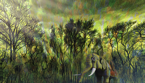 Dark Colorful Forest with Elephant