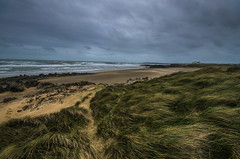 on the dunes (Glen Parry Photography) Tags: glenparryphotography landscape anglesea d7000 landscapephotography nikon nikond7000 nikonphotographer nikonphotography sigma sigma1020mm wales ynysmon sea seascape beach