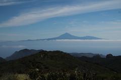 Tenerife from Alto de Guarajonai (plutogno) Tags: canary island la gomera tenerife pico del teide de parc national guarajonay