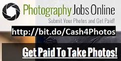 Cash For Your Photos (hi_cut_cutie) Tags: cash cat photos money beach dog trump camera job jobs work funny sexy adult food facebook social celebrity celebrities pictures fun vacation