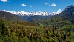 The Caucasus (802701) Tags: 2019 201904 43 april april2019 em1 em1markii em1mkii europe georgia mft mestia micro43 omd omdem1 olympus olympusomdem1 olympusomdem1mkii sakartvelo svaneti fourthirds microfourthirds mirrorless photography travel travelling მესტია საქართველო სვანეთი