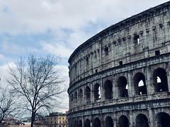 Coliseo (s.espinosa) Tags: coliseo roma italia fondo cuadro picture rome italy background print
