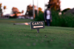 Street - Carts (Cameron McGhie) Tags: arty maniacmcghie cameroncmghie edited streetphotography cameronmcghie cameron 2019 arizona az 35mm18 35mm nikon arizonaphotographer streetphotos streetphotogprahy nikond5300 golf carts golfcarts golfing green shallow sunset
