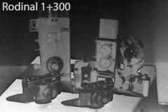 DevTest_Rodinal1-300 (Mark Dalzell) Tags: black white developing test bw nikon f3 f3hp kodak tmax tmax400 film xtol sprint sprintsystems d76 rodinal hc110 diafine caffenol stand standdevelop standdevelopment fpp filmphotographyproject