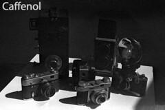 DevTest_Caffenol (Mark Dalzell) Tags: black white developing test bw nikon f3 f3hp kodak tmax tmax400 film xtol sprint sprintsystems d76 rodinal hc110 diafine caffenol stand standdevelop standdevelopment fpp filmphotographyproject