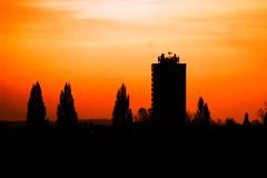 Views From The Tower Block (lightersideofdark) Tags: