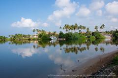 IMG_7201.jpg (Dhammika Heenpella / CWSSIP Images of Sri Lanka) Tags: dhammikaheenpella traveldestination ශ්රීලංකාවේෆොටෝ ශ්රීලංකාවේචායාරූප ධම්මිකහීන්පැල්ල estuary placesofinterest polwattariver imagesofsrilanka srilanka weligama polwathumodara ශ්රීලංකාව