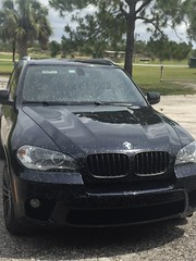 Love Bugs invasion - 25 mile ride did this to our ride ! (Olivier Van Wonterghem) Tags: bmw x5 50 twinturbo v8