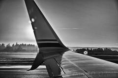 Alar Stylings 5 (LongInt57) Tags: aircraft airplane jet wing tarmac airport seatac seattle washington usa bw monochrome black white grey gray