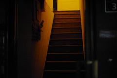 2223/1731 (june1777) Tags: snap street seoul night light kyocera contax n digital ndigital nd carl zeiss planar nplanar 50mm f14 200