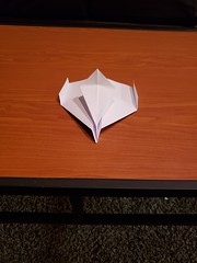 House Sigil in Costume (awebb0918) Tags: paper airplane art sigil nonfunctional folded intact