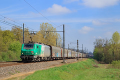 489023-Gevrey-)Sibelin (AziroxY) Tags: trains trainspotting train photo photographie plm photosncf prima bb27000 soleil