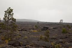 Mauna Ulu, Kilauea, Hawaii Volcanoes National Park, Hawaii (Roger Gerbig) Tags: maunaulu hawaiivolcanoesnationalpark kilauea volcano hawaii bigisland island rogergerbig canoneos5dmarkii canonef24105mmf4lisusm 3307