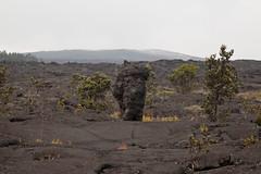 Lava Tree, Mauna Ulu, Kilauea, Hawaii Volcanoes National Park, Hawaii (Roger Gerbig) Tags: maunaulu hawaiivolcanoesnationalpark kilauea volcano hawaii bigisland island rogergerbig canoneos5dmarkii canonef24105mmf4lisusm 3314 volcaniccone easternriftzone lavatree