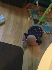 """Sam Tries to Crawl • <a style=""""font-size:0.8em;"""" href=""""http://www.flickr.com/photos/109120354@N07/47752256041/"""" target=""""_blank"""">View on Flickr</a>"""