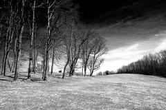 Stark Landscape in B&W (pa_cosgrove) Tags: landscape bw stark hill trees sky clouds ilford sfx fuji fujifilm xt3