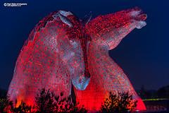 The Kelpies at Falkirk (Nigel Blake, 17 MILLION views! Many thanks!) Tags: the kelpies andyscott horse sculpture falkirk scotland nigelblakephotography nigelblake