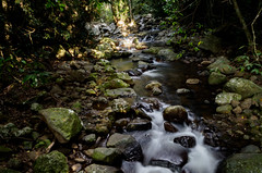 Cascades (jojoe_au) Tags: australia autumn nature queensland tamborinemountain tourism naturalbridge rainforest runningwater flowingwater waterfall creek stream