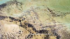 Stromalites_0777