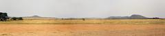 Seronera Airstrip, Serengeti, Tanzania (inyathi) Tags: africa eastafrica tanzania seronera serengeti airstrips