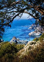 Big Sur Coast No.1 (CDay DaytimeStudios w /1 Million views) Tags: ca california highway1 ocean landscape bigsur mountains water coastline hills pacificcoasthighway pacificcoast bluesky