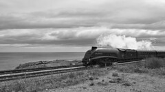 F5058781 silver E-M5ii 12mm iso200 f8 1_640s 0.3 (Mel Stephens) Tags: 20190505 201905 2019 q2 16x9 wide widescreen olympus mzuiko mft microfourthirds m43 1240mm pro omd em5ii ii mirrorless gps uk scotland aberdeenshire stonehaven bw black white silver efex coast coastal transport train rail railway steam engine 60009