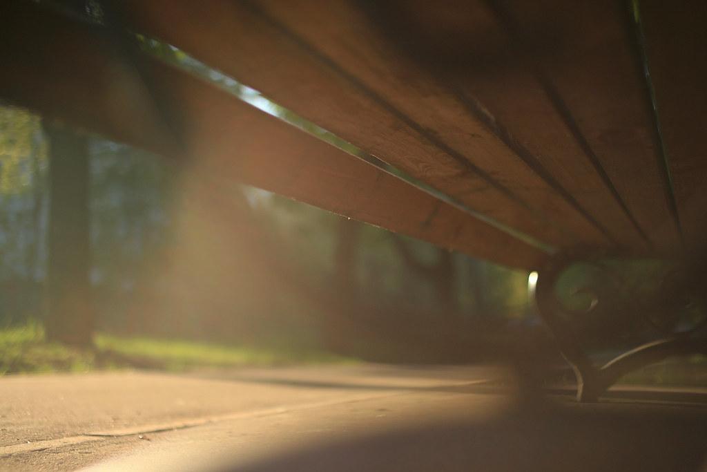 фото: Light
