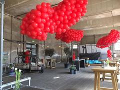 rood organic ballonnen cloud