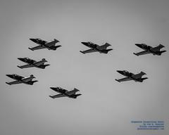Black & White of Breitling Jet Team in Avenger Formation (AvgeekJoe) Tags: aeroalbatros aerol39 aerol39c aerovodochodyl39 aerovodochodyl39albatros aerovodochodyl39c aerovodochodyl39calbatros albatros bw blackwhite blackandwhite breitling breitlingjetteam d5300 dslr importedkeywordtags l39c l39calbatros nikon nikond5300 trainer aircraft airplane aviation formation formationflight formationflying jet jetaircraft jettrainer plane