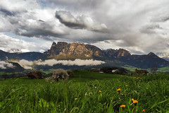 Apri la finestra e... respira (F@bio F.) Tags: altoadige italia sudtirol montagna dolomiti unesco sciliar nuvole cielo prato paesaggio vista panorama natura allaperto landscape mountain clouds sky green outdoor italy