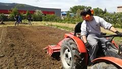Lurra xehetzen (Derio Nekazaritza Eskola BHI) Tags: derio nekaderio ikasleak agria traktorea tractor
