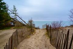 Toronto Island (dunescape) Tags: toronto fence lakeontario torontoisland