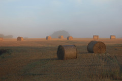 Sunrise (Ken Meegan) Tags: sunrise saltmills cowexford ireland field haybale 2792015