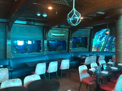 The Mermaid Bar (jericl cat) Tags: mermaid bar live brunch nautical theme vintage pool swimming porthole ft lauderdale florida fort