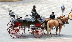 PRIMAVERA EN SEVILLA (ANDALUCÍA/ESPAÑA/SPAIN) (DAGM4) Tags: 2019 andalucía españa europa europe espagne espanha espagna espana espanya espainia spain spanien sevilla horse caballos feriadesevilla