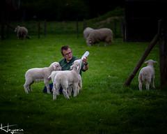 IMG_3535-1 (Wayne Cappleman (Haywain Photography)) Tags: wayne cappleman haywain photography portrait photographer farnborough hampshire