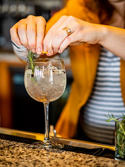 Spritz (Bryan Esler Photo) Tags: zoko822 grandrapidsmagazine restaurant bar drink gin gintonic grandrapids