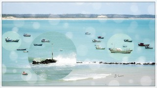 Rio Grande do Norte - Baía Formosa - Barcos