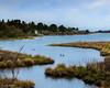 Spring morning at Slough Cove, Edgartown Great Pond (John Piekos) Tags: pond scenicview spring coastline marthasvineyard brine xt3 geese water brackish pastoral saltpond edgartown coast fujifilm edgartowngreatpond