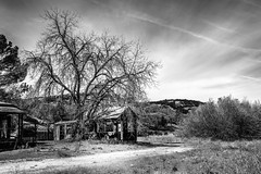 Soledad, California (paccode) Tags: solemn california shack abandoned landscape monochrome d850 home hills creepy serious scary quiet forgotten tree blackwhite soledad unitedstatesofamerica