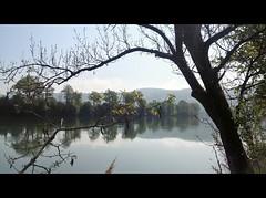 ViaRhenana 8 (Beat09) Tags: schweiz switzerland suisse rhein rhine rheinufer viarhenana wasser water natur nature