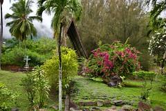 Peace & Serenity 2 (jjknitis) Tags: 2019 cruise eurodam flowers garden hollandamerica island march30 marquesas mist notredame nukuhiva polynesia southpacific