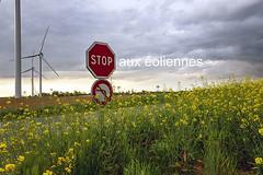 stop aux éoliennes (louis.labbez) Tags: 2019 59 france labbez nature nuage paysage sky nord campagne champs ciel colza fleur flower jaune noir country vert éolienne route road hautsdefrance