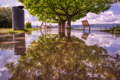 Überschwemmung am Bodensee bei Radolfzell