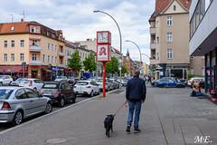 DSC_1832 (Michael Eicher) Tags: ausflüge berlin heimat