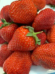 Macfrut2019_pomologica (Salvi Filiera) Tags: macfrut frutto fragole