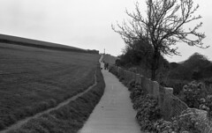 Padstow, Cornwall (AJH_1) Tags: olympus om1 50mm lens 35mm film kodak tmax 100 padstow cornwall monochrome bw blackandwhite england uk sea coast landscape view coastal path