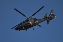LYF43 (AviaGeek) Tags: eurocopter as365n3 dauphin lithuanian air force 503fdc eysa sqq