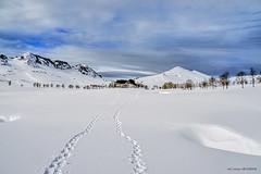 Campas de Urbia (Jabi Artaraz) Tags: urbia aizkorri winter elurra nieve invierno